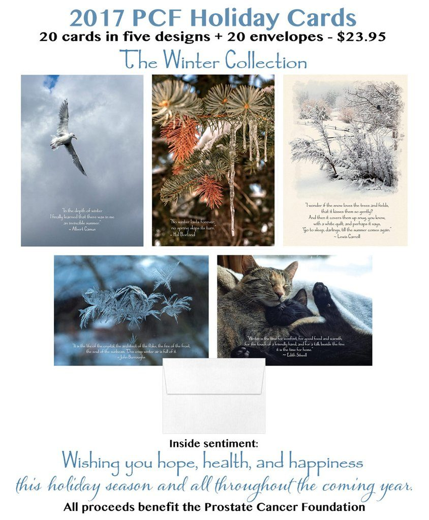 Fogelberg Holiday Cards