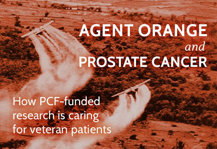 Agent Orange And Prostate Cancer Prostate Cancer Foundation